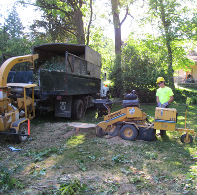 Big Chipper Inc is a Grand Rapids, Michigan based full service tree service  and landscape supply company. Our tree services include tree removal, ... - About Us - Tree Services - Grand Rapids, MI